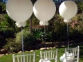 Large White 36inch Balloons -  Wedding Balloon Decor
