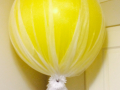 Giant Balloons with Tulle net & Flower