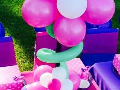 Pink & Puple Theme Party Decor
