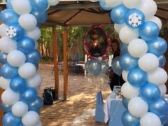 Frozen Party Decor Balloon Arch