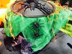 Halloween Party decor cauldron