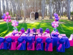 Purple & Pink Party at Winery Road Forest
